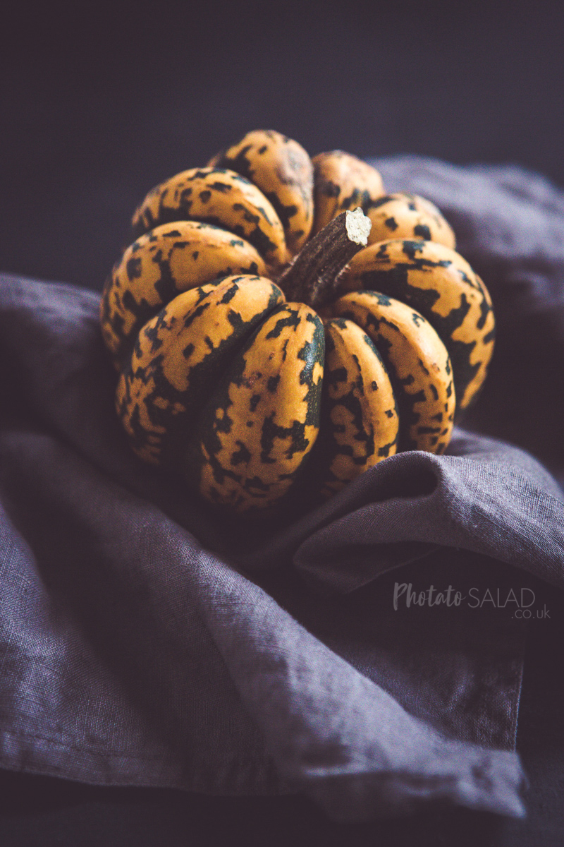 Green and Orange Speckled Season Squash / Mini Pumpkin on a Grey Linen Napkin